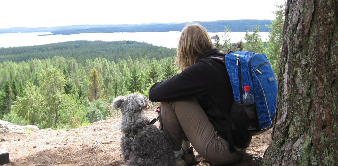 Glaskogen, kvinna, hund, utsikt