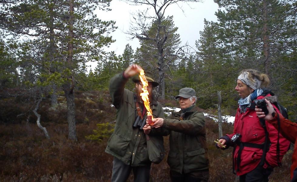 Camping45, SkogsOla guidar