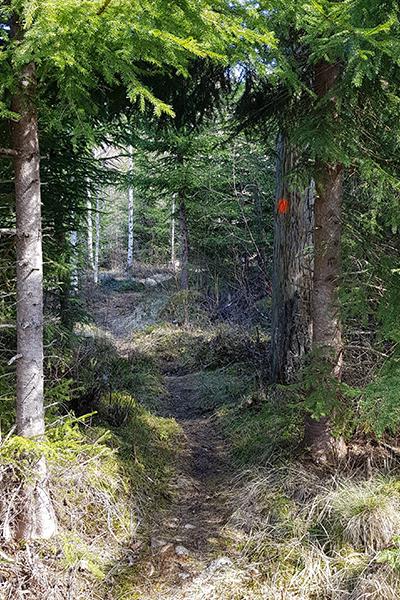 Södra Gunnarskogsleden